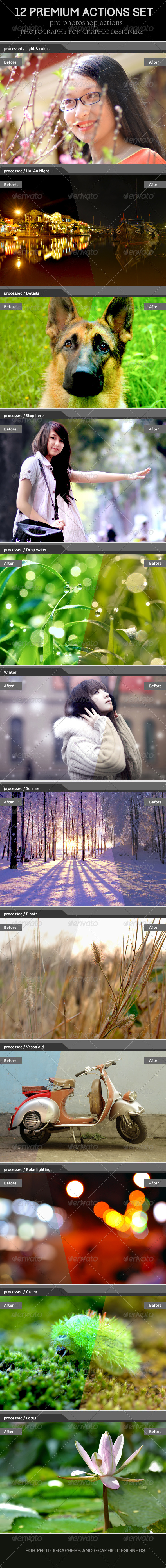 GraphicRiver 12 Premium Actions Set 7263429