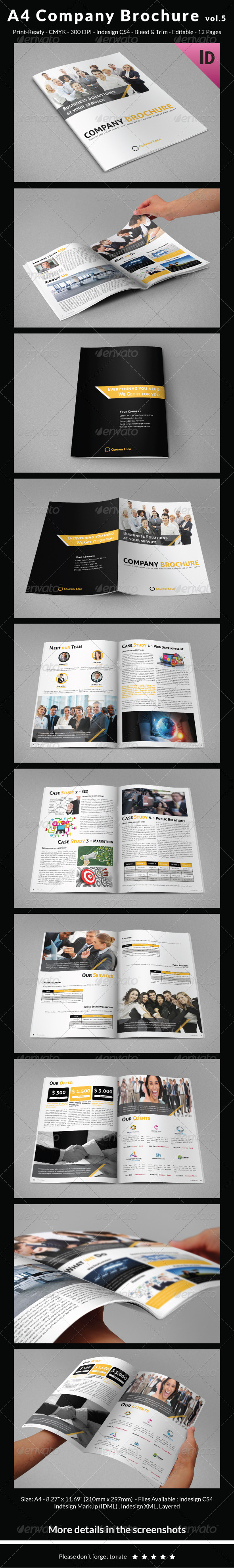 GraphicRiver A4 Company Brochure vol.5 7243484