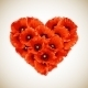 Flower Heart of Red Poppies - GraphicRiver Item for Sale
