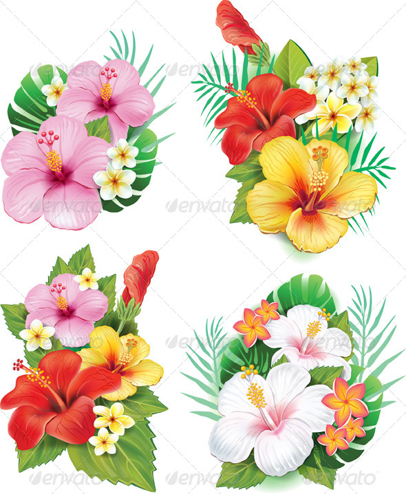 GraphicRiver Arrangement from Hibiscus Flowers 7279513