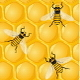 Bees and Honeycombs - GraphicRiver Item for Sale