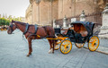 Black  horse and traditional tourist carriage in Sevilla - PhotoDune Item for Sale