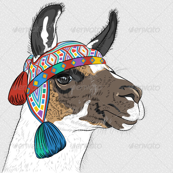 GraphicRiver Sketch of Alpaca 7291496