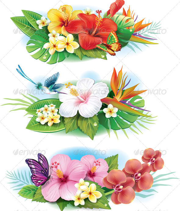GraphicRiver Arrangement of Tropical Flowers 7292161