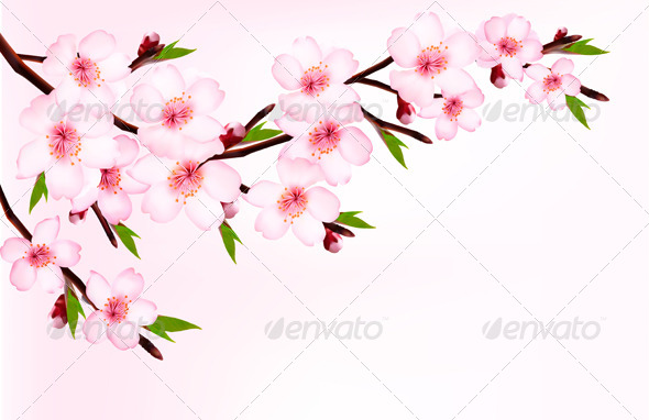 GraphicRiver Spring Background of a Blossoming Tree Branch 7294077