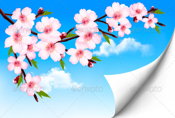 GraphicRiver Spring Background of a Blossoming Tree Branch 7294117