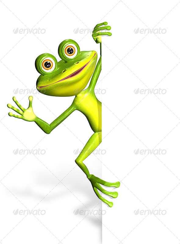 GraphicRiver Frog and white background 7294640