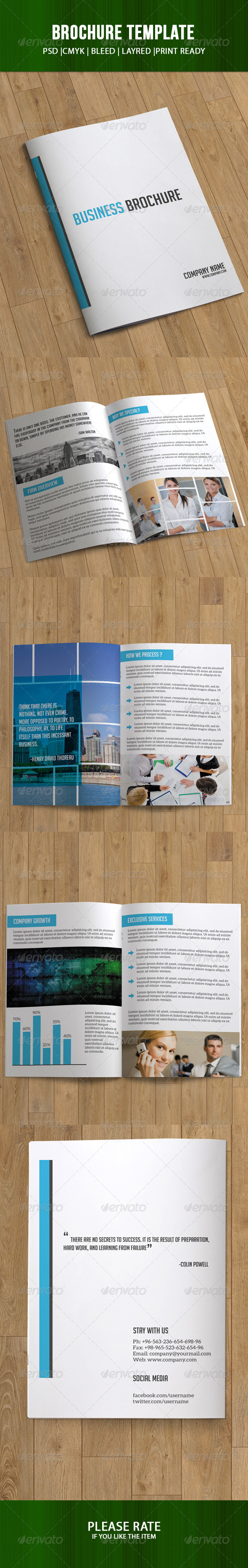 GraphicRiver Bifold Business Brochure-8 Pages 7294987