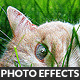 Artistic Photo Effect Actions Pack - GraphicRiver Item for Sale