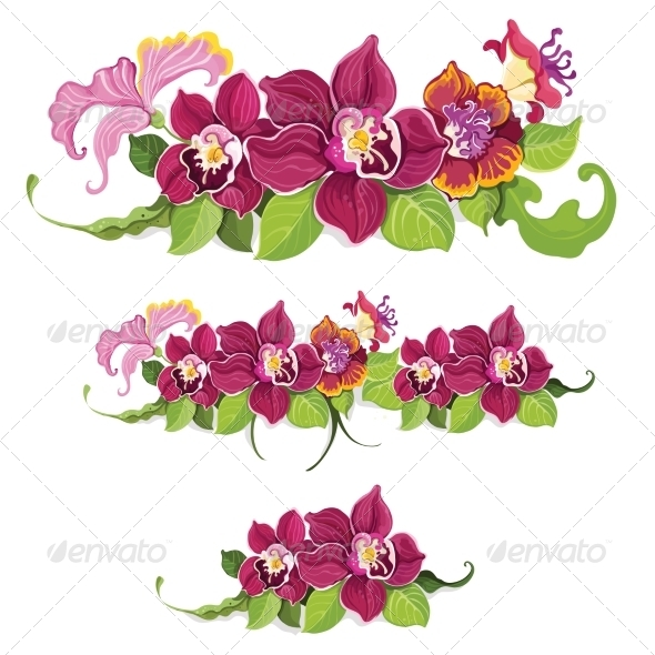 GraphicRiver Tropical Flowers 7298645