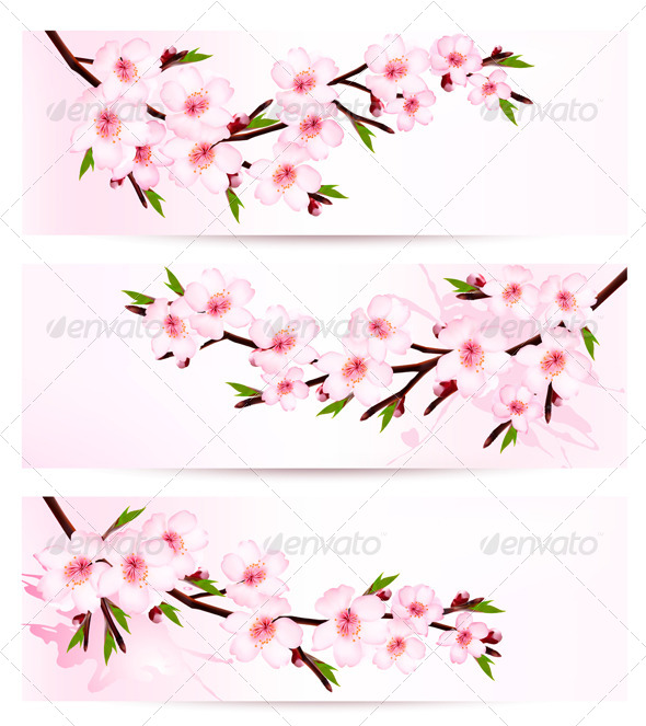 GraphicRiver Three Sakura Branch Banners 7294129