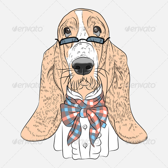 GraphicRiver Vector Funny Cartoon Hipster Dog Basset Hound 7321862