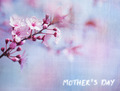 Mother's day greeting card - PhotoDune Item for Sale