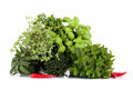 Aromatic Plants Mix - PhotoDune Item for Sale