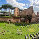 Hippodrome Stadium of Domitian, Palatine Hill Rome - PhotoDune Item for Sale