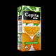 Cepita Naranja Tetrapak Slim 1000ml - 3DOcean Item for Sale