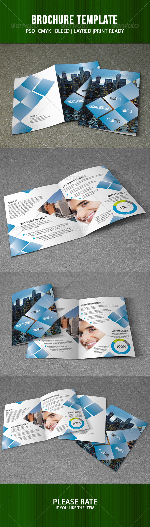 GraphicRiver Business Brochure Template 7336726