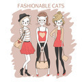 fashion girls cats - PhotoDune Item for Sale