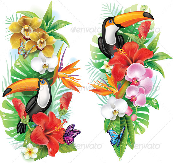 GraphicRiver Tropical Flowers Toucan and Butterflies 7341607