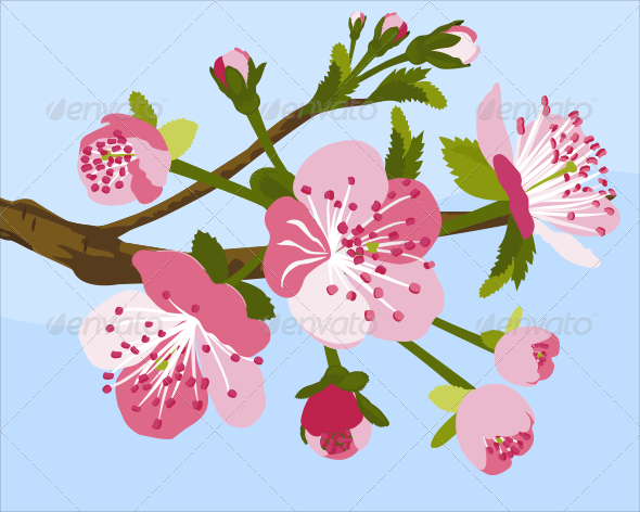 GraphicRiver Cherry Blossom 7344217