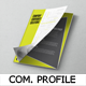 Professional Company Profile Template - GraphicRiver Item for Sale