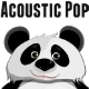 Acoustic Guitar & Strings