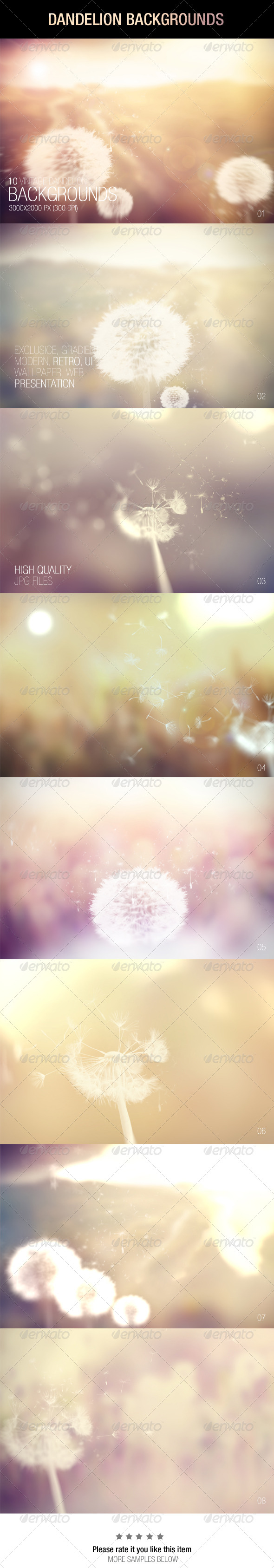 GraphicRiver Dandelion Backgrounds 7363341