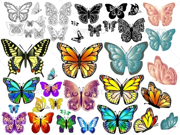 GraphicRiver Set of Colorful Realistic Isolated Butterflies 7368772