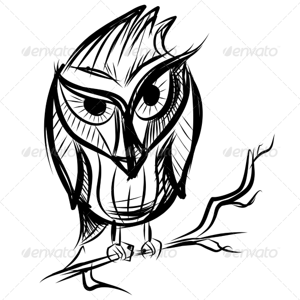 GraphicRiver Smart Owl on the Branch 7368805