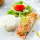 grilled salmon and rice - PhotoDune Item for Sale