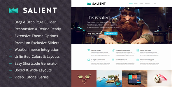 Theme de WordPress Estilo Flat: Salient
