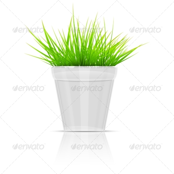GraphicRiver White Flowerpot with Green Grass 7376677