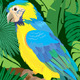 Seamless Pattern with Blue Yellow Macaw Parrot - GraphicRiver Item for Sale