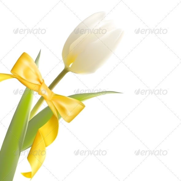 GraphicRiver White Tulip and Yellow Bow on Holiday 7394122