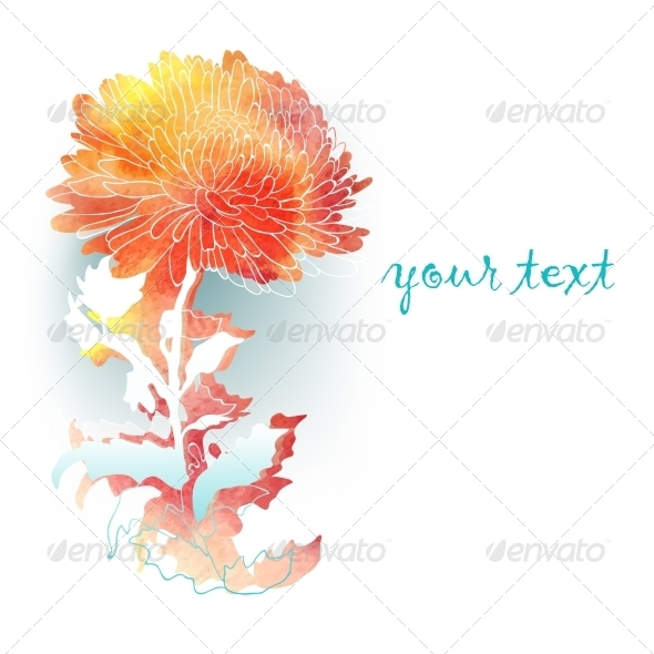 GraphicRiver Watercolor Background with Chrysanthemum 7395266