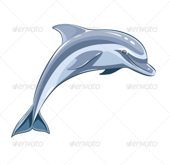GraphicRiver Dolphin 7399787