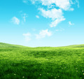 Sky and grass background - PhotoDune Item for Sale