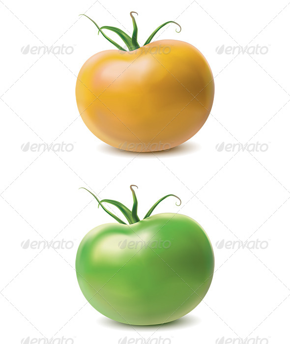 GraphicRiver Tomato Yellow and Green 7412359