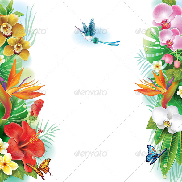 GraphicRiver Tropical Frame 7412465
