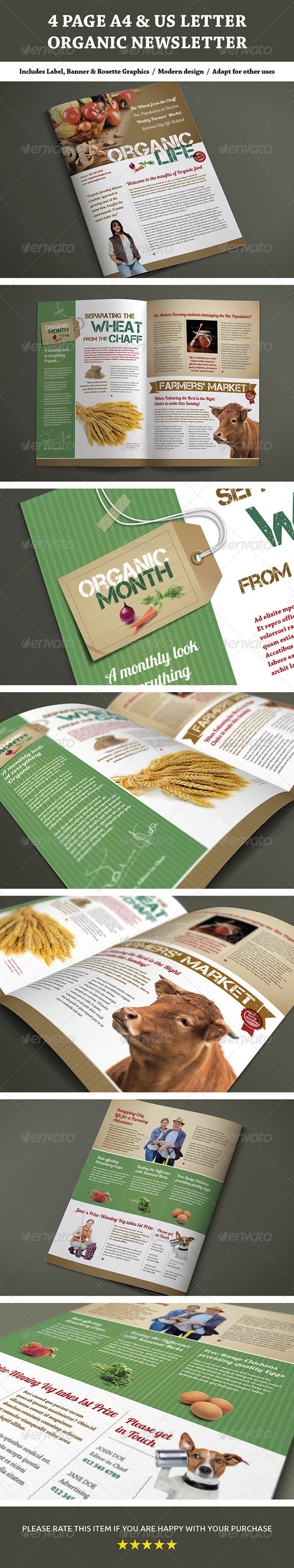 GraphicRiver 4 Page A4 and US Letter Organic Newsletter 7413416