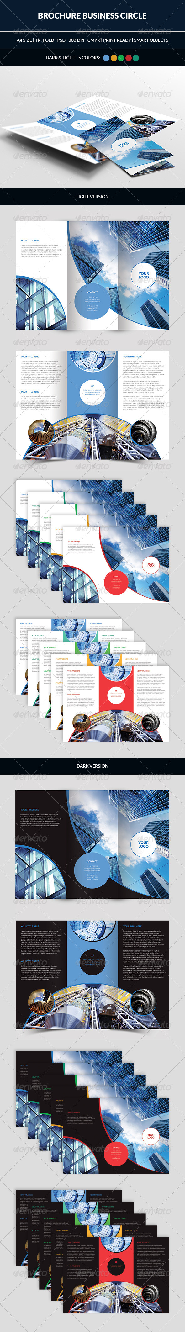GraphicRiver Brochure Business Circle Tri Fold 7390669