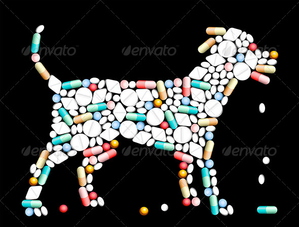 GraphicRiver Tablets Pills Dog 7414718