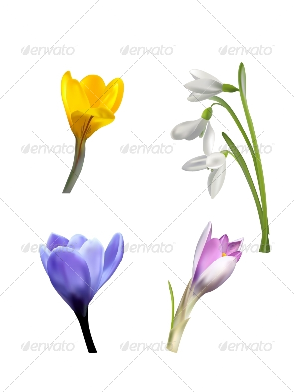 GraphicRiver Set of Spring Flowers and Grass 7415922