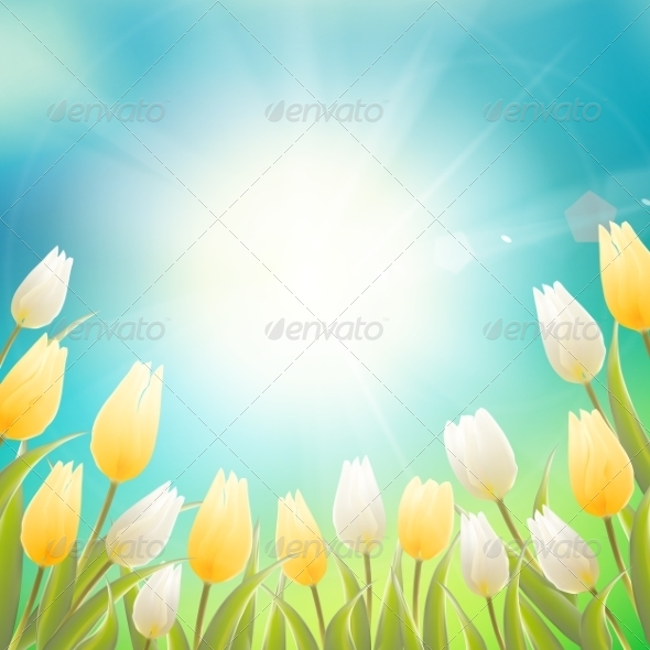 GraphicRiver Card with White and Yellow Tulips 7416723