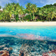 Beach with coral reef underwater view - PhotoDune Item for Sale