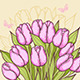 Pink Tulips and Butterflies - GraphicRiver Item for Sale