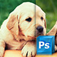 11 Photo Effects - GraphicRiver Item for Sale