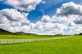 Green Pasture With White Fence - PhotoDune Item for Sale
