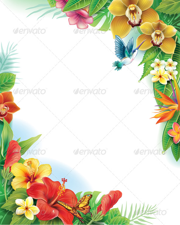 GraphicRiver Tropical Frame 7431580