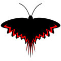 Dark butterfly - PhotoDune Item for Sale